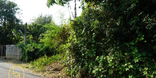 Hot Deal !!!!!! ที่ดินทำเลสวยในเมืองย่านหนองหอย Land for sale in the city at Nong Hoi