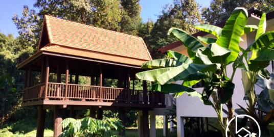 Modern Traditional House & Pavilion for Rent in Private Greenery Space