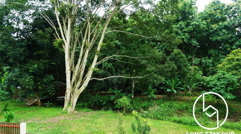 Land for Sale Living in Chiang Mai CS423_1